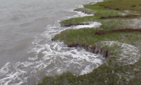 Salt marsh erosion
